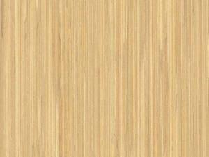 дизайн Natural cane на стенен панел за асансьор Synergy 300