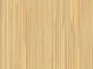 дизайн Natural Cane на стенен панел за асансьор Synergy 300 линия B