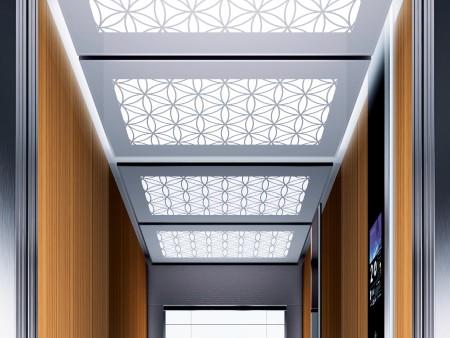 дизайн на таван Water Lily Large на асансьорна кабина Evolution 200 линия А